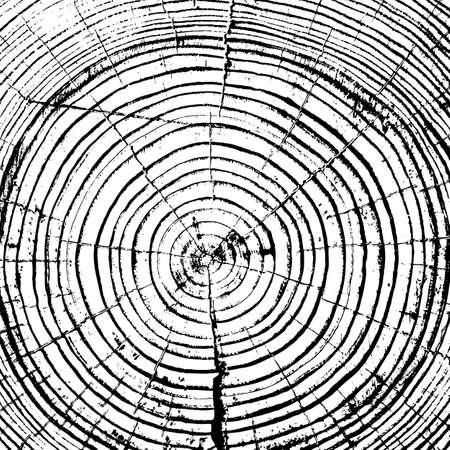 年輪の木トランクの背景をカットを見た。ベクトル イラスト。