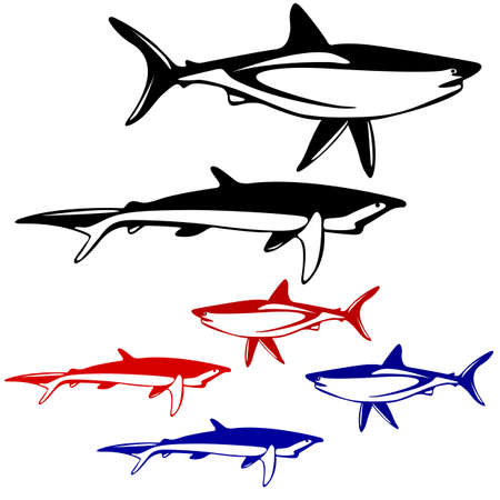 Set shark,  black and white outline. Vector illustration. Vector