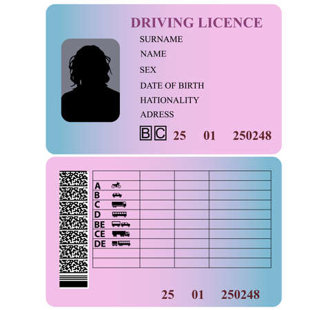 Driving license woman. Vector illustration.