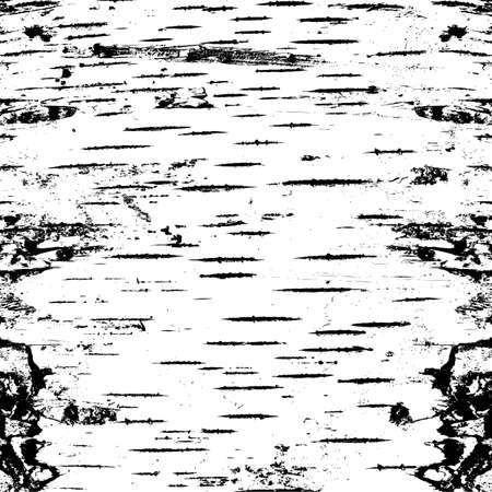 균열 질감에 자작 나무의 껍질입니다. 벡터 일러스트 레이 션.