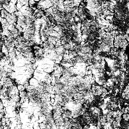 cortex: bark of birch in the cracks texture. Vector illustration. Illustration