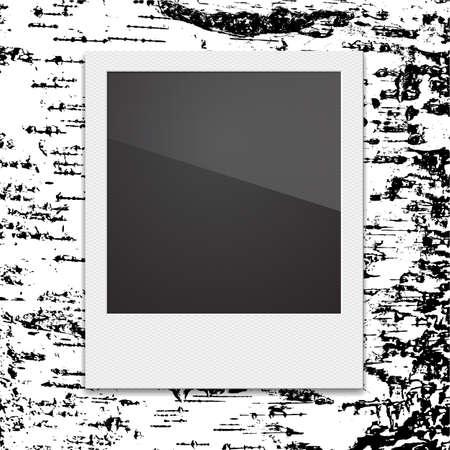 poloroid: Retro Polaroid photo frame on the background of birch. Vector illustration