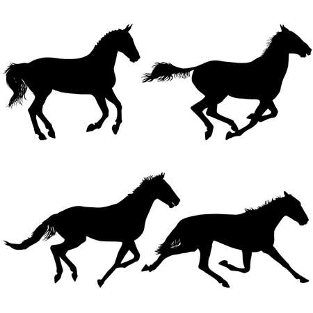 animal silhouette: Set  silhouette of black mustang horse vector illustration