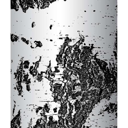bark: Bark of birch in the cracks texture. Vector illustration.
