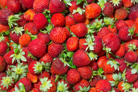 sappy: Background of beautiful and juicy strawberries with green leaves. Stock Photo