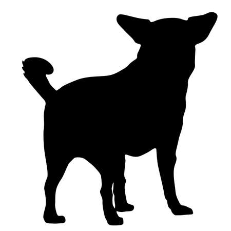 Chihuahua dog silhouette on a white background.