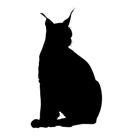 Silhouette of the Lynx on a white background. Ilustracja