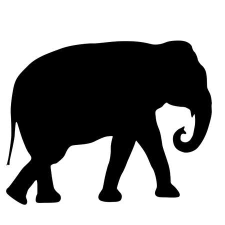 Silhouette large African elephant on a white background. Illustration