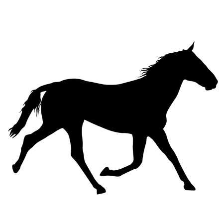 Animal silhouette of black mustang horse illustration.