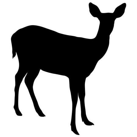 Silueta del ciervo sobre un fondo blanco.