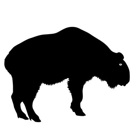 Silhouette of the bison on a white background.