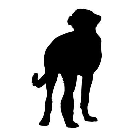 Shepherd dog silhouette on a white background. Standard-Bild - 125158829