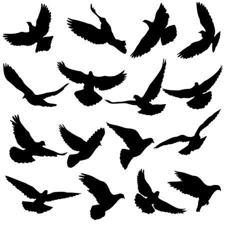 Konzept der Liebe oder des Friedens. Stellen Sie Silhouetten Tauben ein.