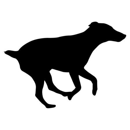 Doberman pinscher dog silhouette on a white background. Illustration