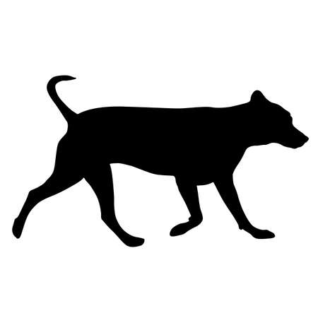 Labrador dog silhouette on a white background.