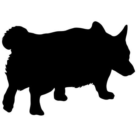 Welsh Corgi dog silhouette on a white background.