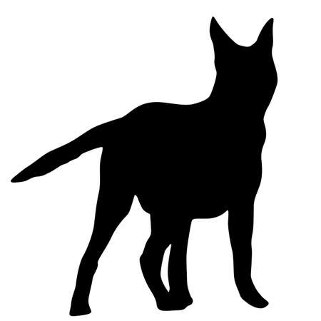 Shepherd dog silhouette on a white background.