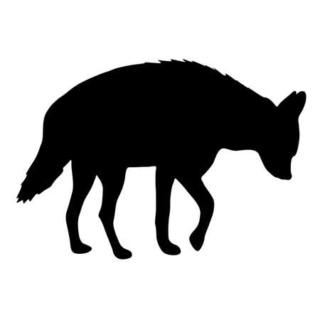 Silhouette of hyena on a white background.