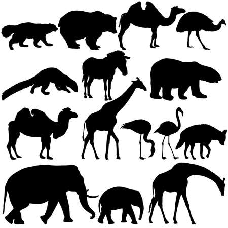 Silhouette elephant bear eagle trot duck zebra on a white background.  イラスト・ベクター素材