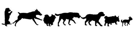 Set silhouette black domestic dog on a white background.