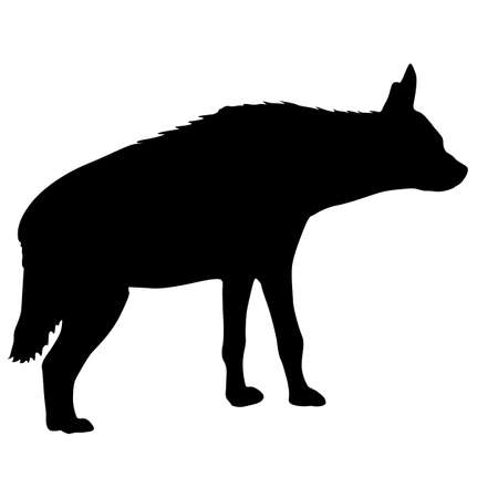 Silhouette of the potted hyena on a white background. Çizim