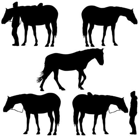 Set silhouette of black mustang horse vector illustration
