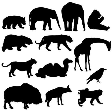 Silhouette elephant bear eagle trot duck zebra parrot on a white background. Ilustracja