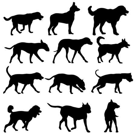 Set silhouette domestic dog on a white background.