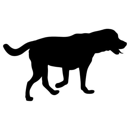 Labrador dog black silhouette on white background.