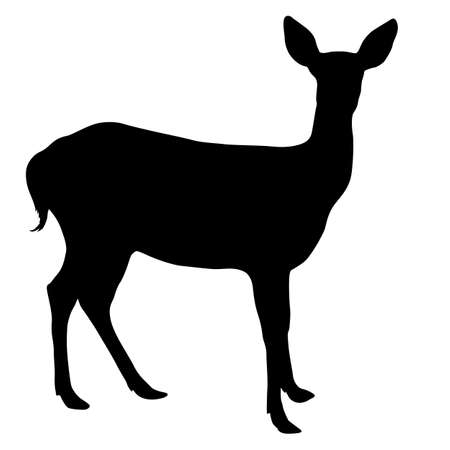 Silhouette deer with great antler on white background.