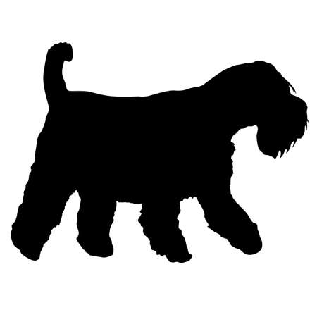 Airedale dog black silhouette on white background. Çizim