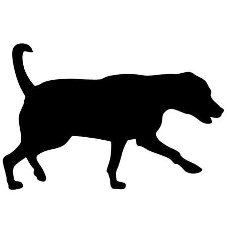 Labrador dog black silhouette on white background.
