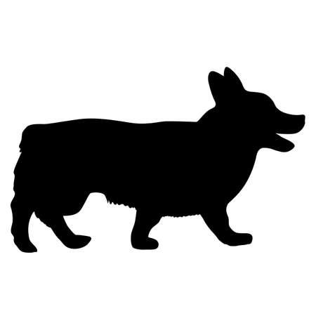 Welsh Corgi dog silhouette on a white background.