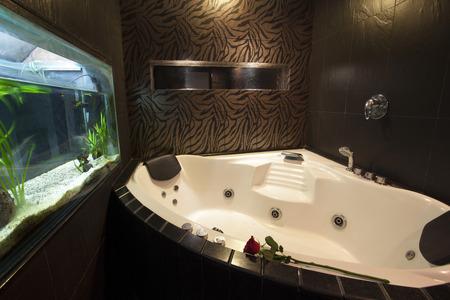 luxury bathroom: luxury bathroom Editorial