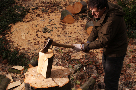 forester: Forester chopping wood with an axe