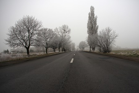 Road on a cold foggy winters day photo