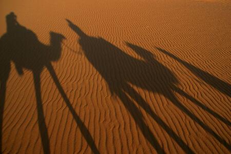 Desert trip photo