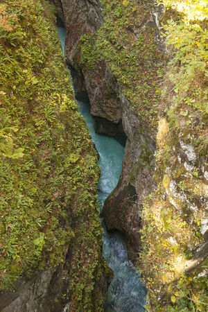 Canyon of a river Kamniska Bistrica in Slovenia. photo
