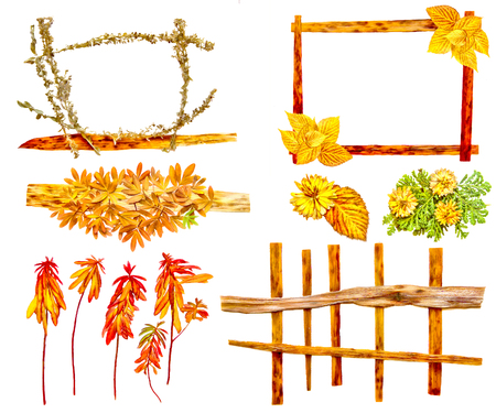 roughage: drawing of dried fall leaves of plants  and branches isolated elements on white watercolor paper background for scrapbook, painted wooden planks, object, roughage autumn leaf.