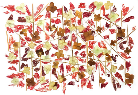 roughage: drawing of dried fall leaves and flowers on a lattice of thin straws and branches isolated on white watercolor paper background for scrapbook, painted wooden planks, object, roughage autumn leaf. Stock Photo