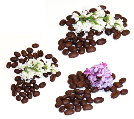 feminine beauty: natural cosmetics concept feminine, beauty green branch of medical sprig bloom white lilac roasted coffee beans, cosmetic scrub set isolated on white scrapbook background. Feminine, beauty, cosmetic concept