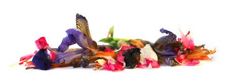 cranesbill: geranium, petunia, dry delicate flowers, leaves and petals of pressed, iris, rose, marigolds, Aquilegia pelargonium, isolated on white background scrapbook