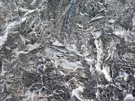bark: abstract  background, pine bark