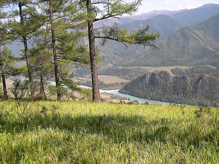 tree in field: paint Altai Mountains; Clean stream, creek, river road, tall, slender tree; field  plantation of medicinal herb; fresh air and undisturbed, pristine nature. Illustration