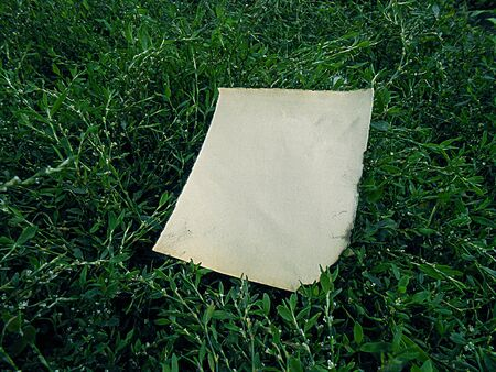 burnt: old burnt paper on the emerald green grass vintage