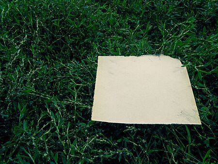 story time: old burnt paper on the emerald green grass vintage
