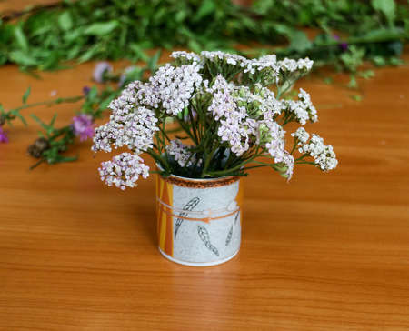 milfoil: bouquet of wild flowers in a cup, milfoil