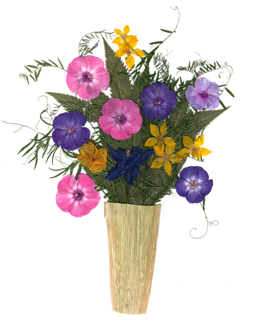 application, a bouquet in a vase of dried pressing bright flowers and small delicate  sweet peas, yellow celandine, multicolor royal Aquilegia, Columbine flower,  long stiff brown iris leaves