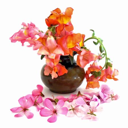 snapdragon: Oil draw illustration of small bouquet of multi-colored snapdragons in a ceramic vase. Photo manipulation Stock Photo