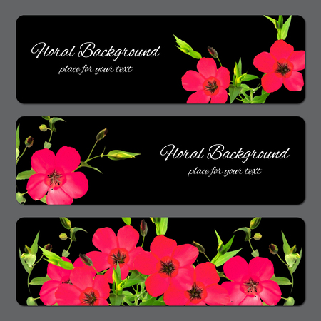 background texture made of pink purslane  and place for text
